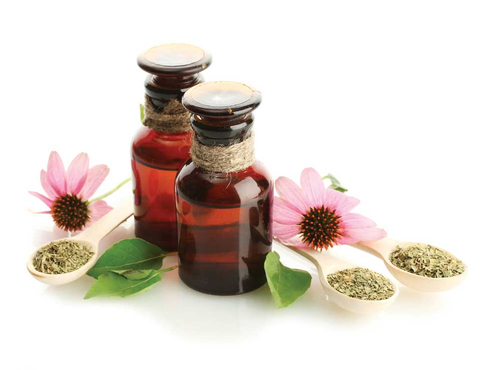 Bottles of herbal medicine, fresh echinacea flowers, and spoons of dried herbs